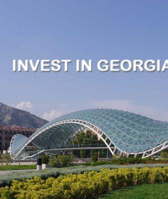 invest-in-georgia-1024x611 (1)